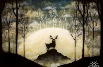1360697945_andykehoe_025